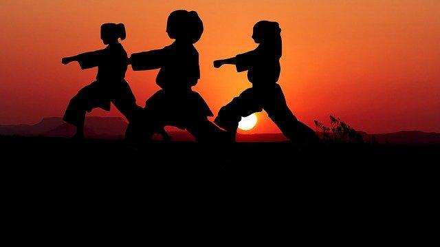 Bojový sport Karate