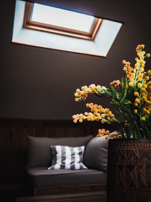 květina obývací poko